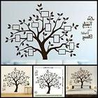 Living Room & Bedroom Beautiful Family Tree Wall Decal with